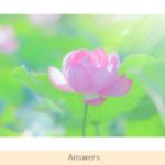 過去世についての質問に守護霊から意外な回答が!